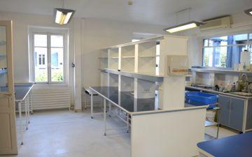 Nettoyage et Désinfection – Laboratoires non-classés – INSTITUT CURIE